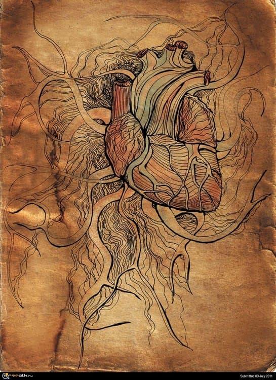 heart5web.thumb.jpg.216d81f93eec7363a216963781e1efb0.jpg