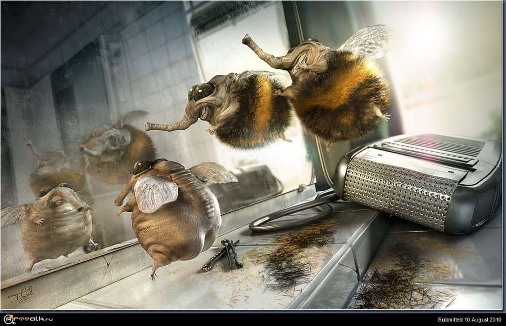 image_04_bumblebees.thumb.jpg.9d2daaa797eda56362e7ffd3a308af4e.jpg