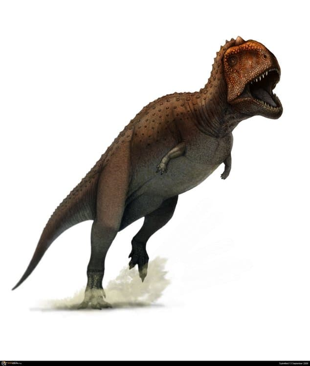 majungasaurus.thumb.jpg.483f44b8863e68e60487587f17b70c25.jpg