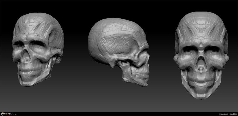 skull.thumb.jpg.2e70369a307b60ec0f81cad89a5a95d3.jpg