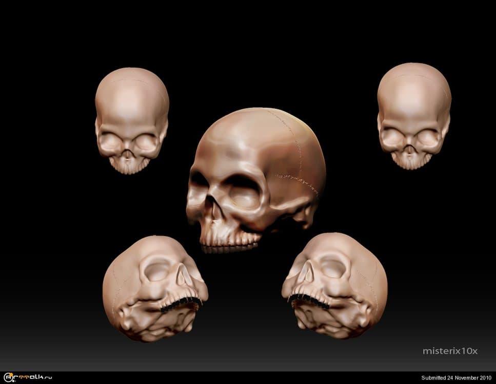 skull.thumb.jpg.a05b8220c9fd4a4b576ae628d5e3f390.jpg