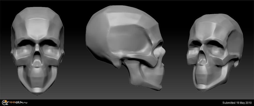 skull_construction.thumb.jpg.5f61815c435dc8563bd234b652dbb766.jpg