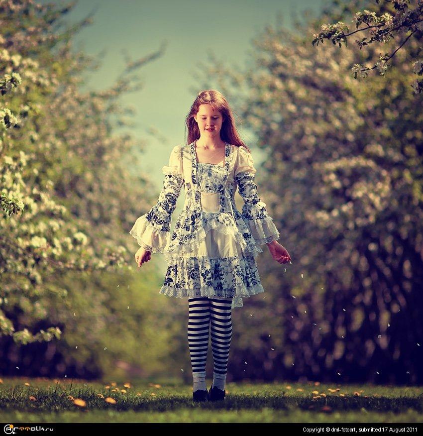 Alice''s Dream