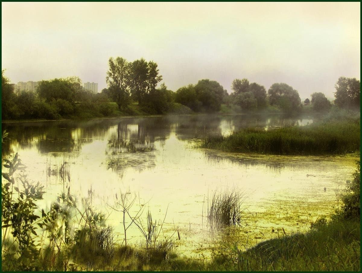 Озеро утром