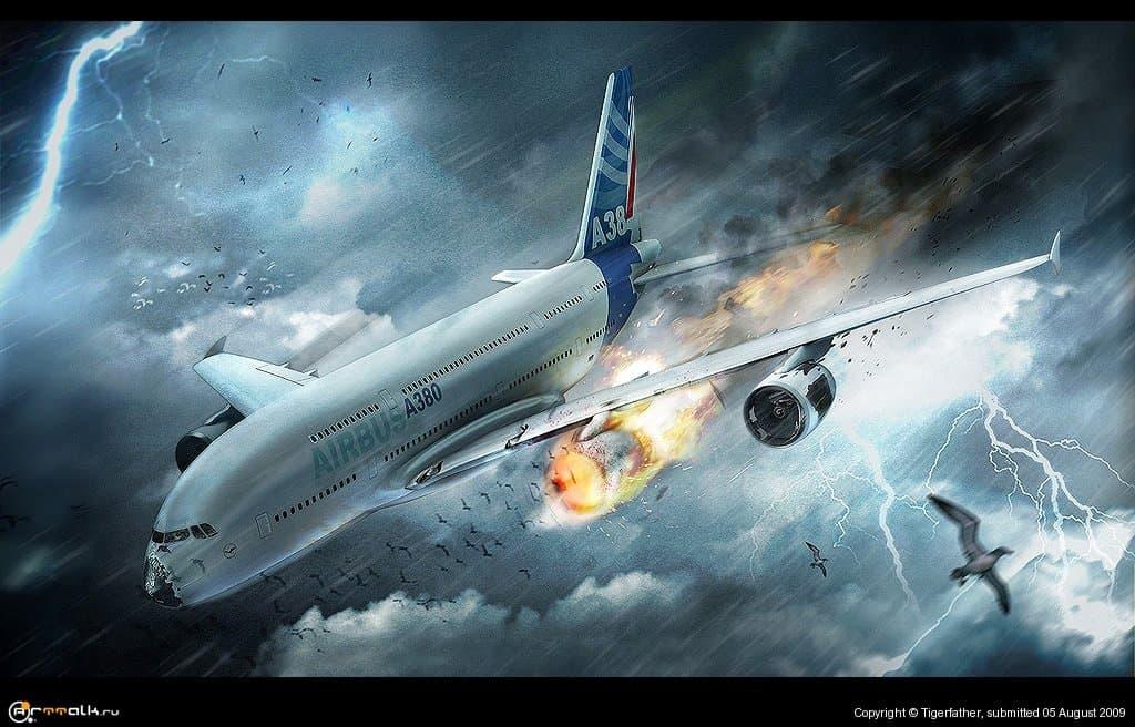 Birds Vs Airplane