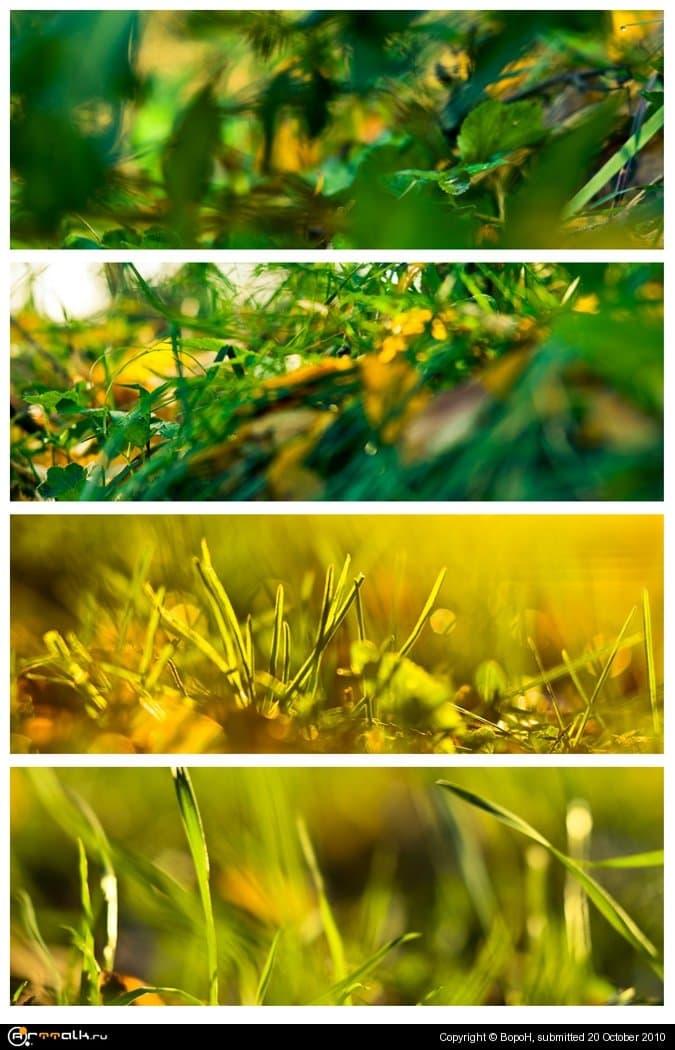 Осенний блюр Ii