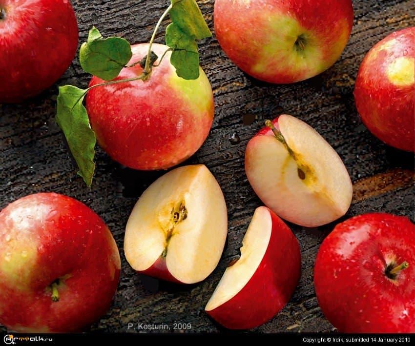 Эх яблочки яблочки