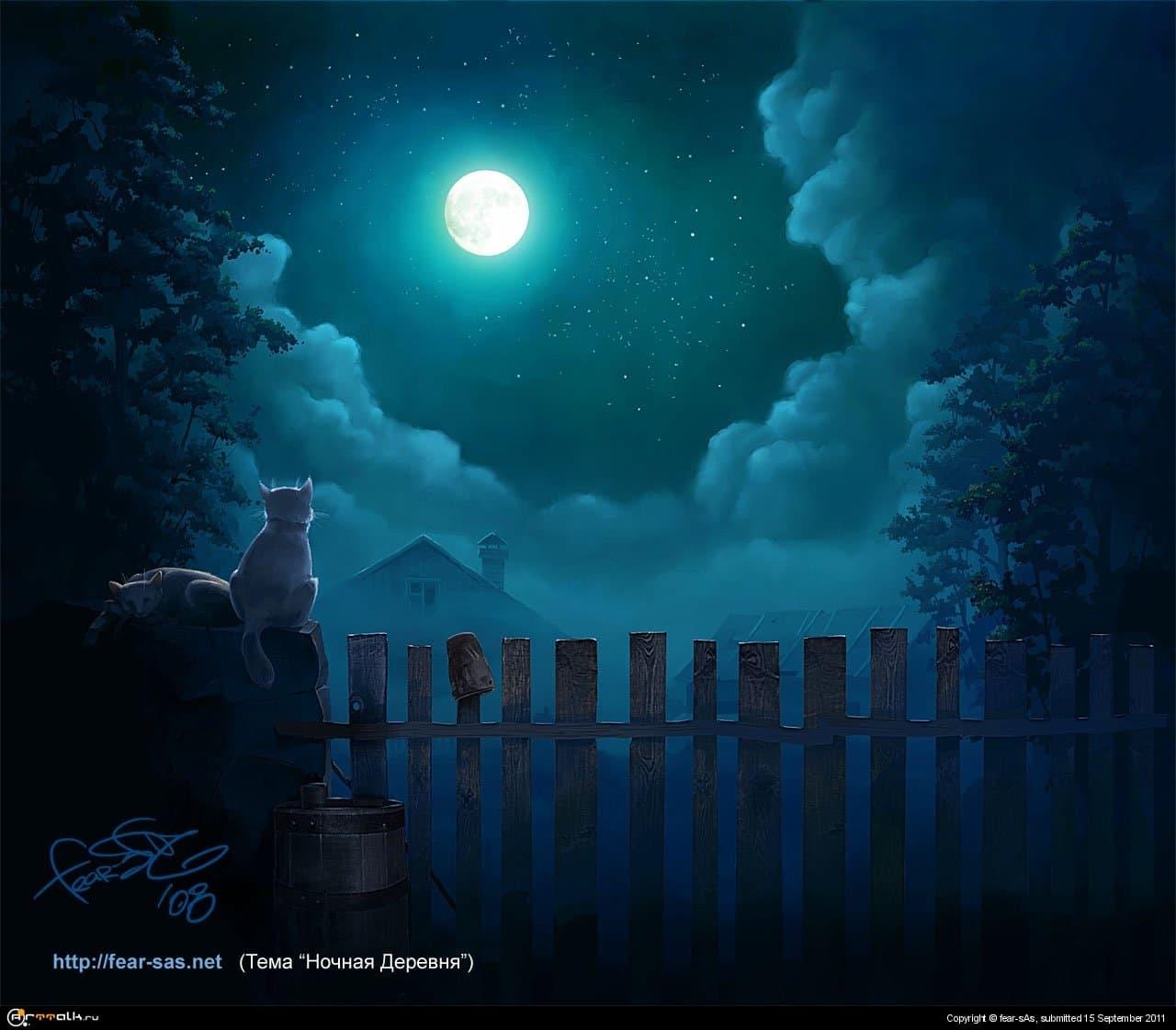Ночь в деревне (ТЕМА САЙТА)