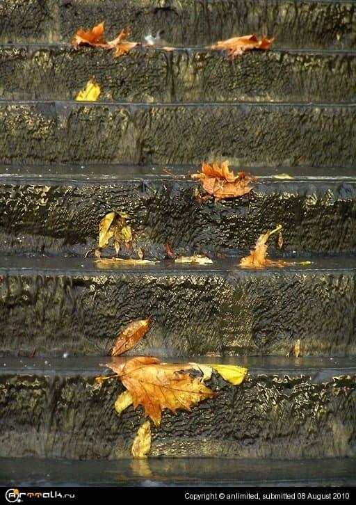 Осенняя ступенчатость