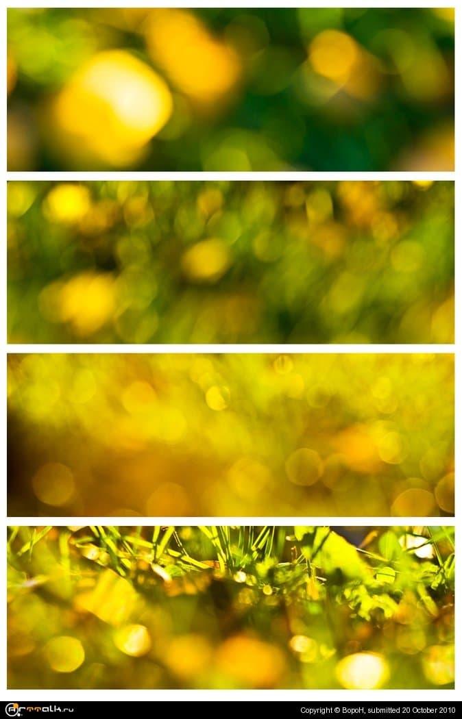 Осенний блюр I