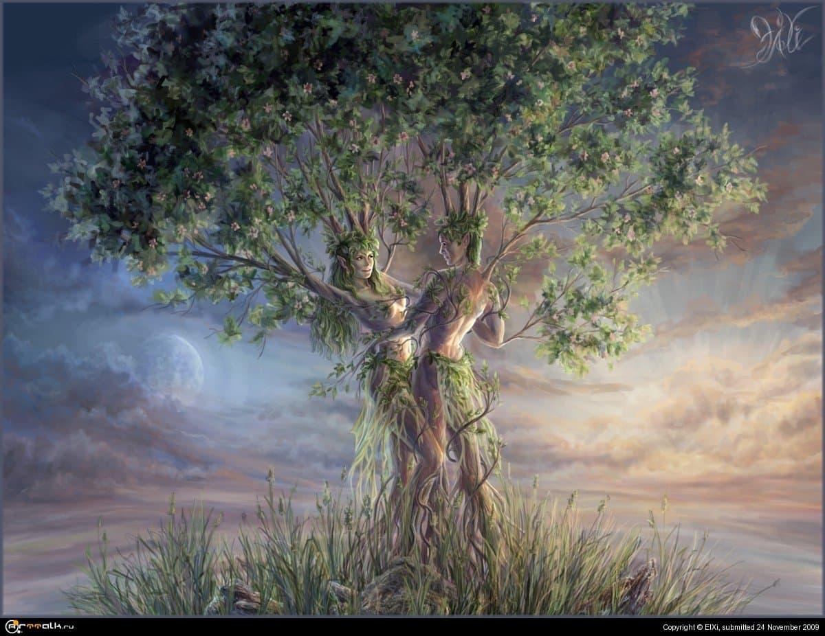 Древо. На краю Вселенной