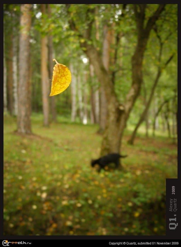 Ekaterenburg Hues Of Autumn 2009