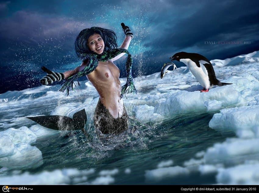 В Антарктиду пришла весна