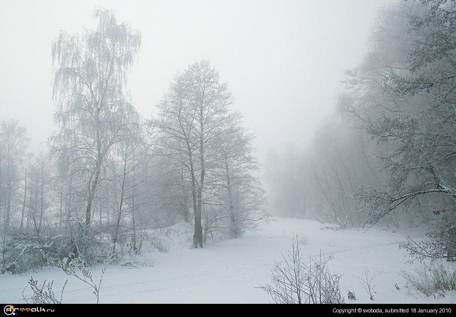 .туманное