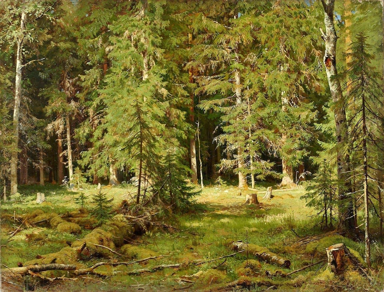 1280px-1880er_Ivan_Shishkin_Wald_anagoria.JPG