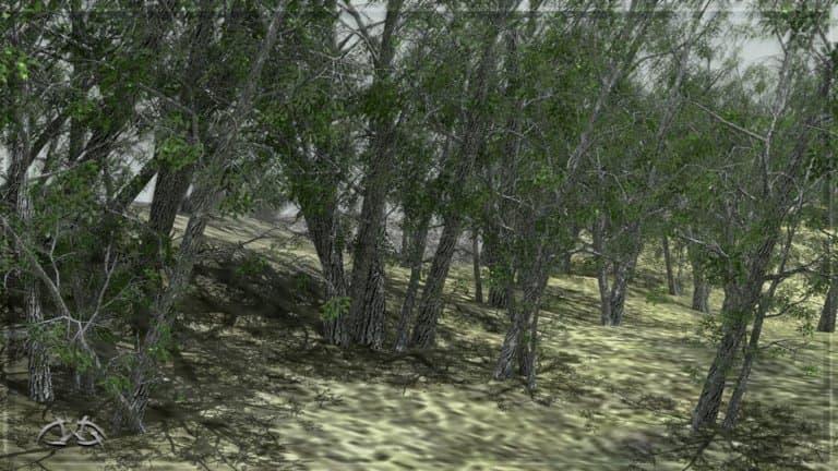 Tree_Lists_05_m.jpg