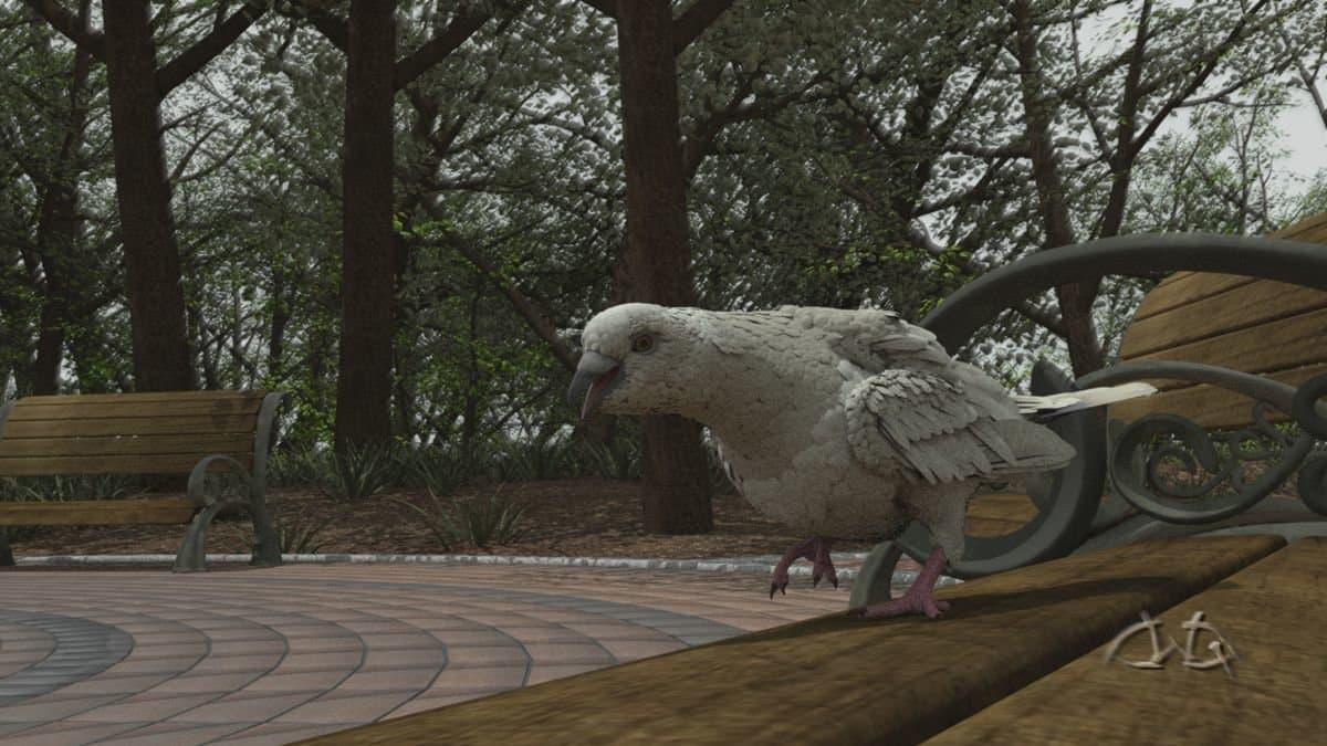 Pigeon_Step_Top.jpeg
