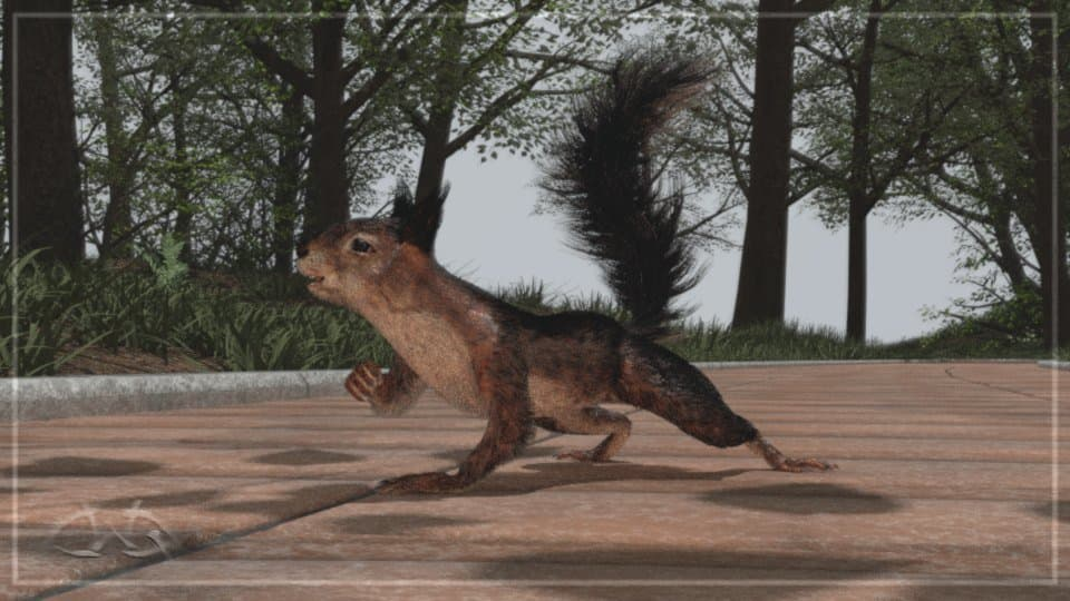 Squirrel_out2_m.jpeg