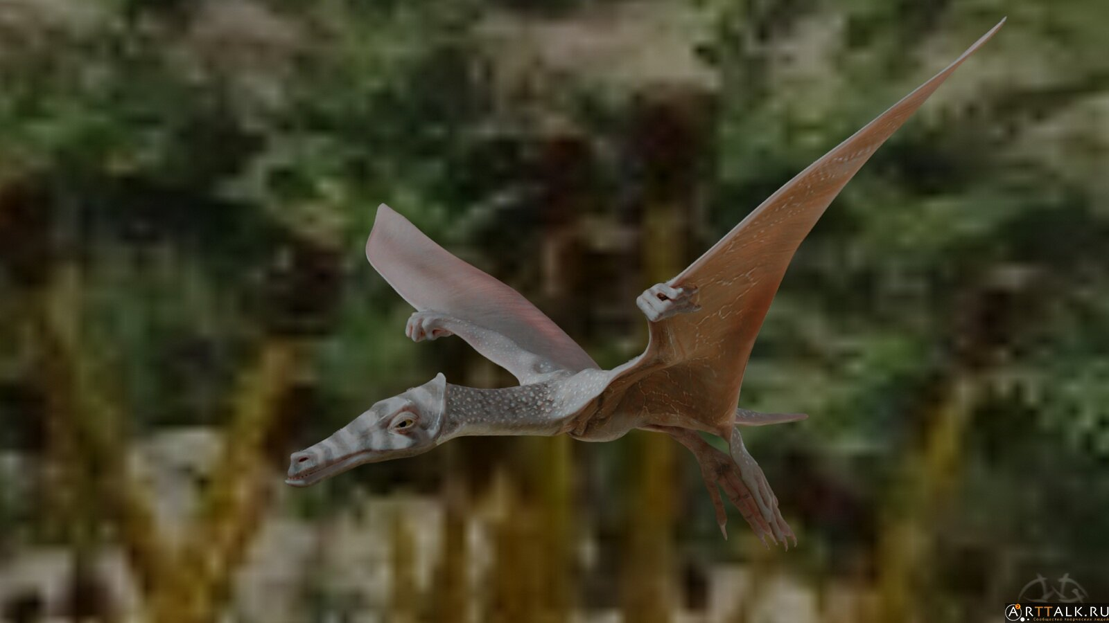 Полет Птахи2.jpeg